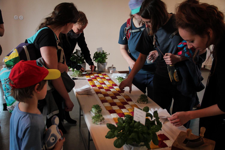 Wild and Root Catering Food Studio Berlin